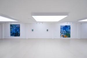 Bartosz Beda exhibit for Image of the Emotion