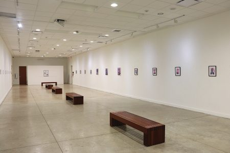 Brownsville Museum Solo Exhibition