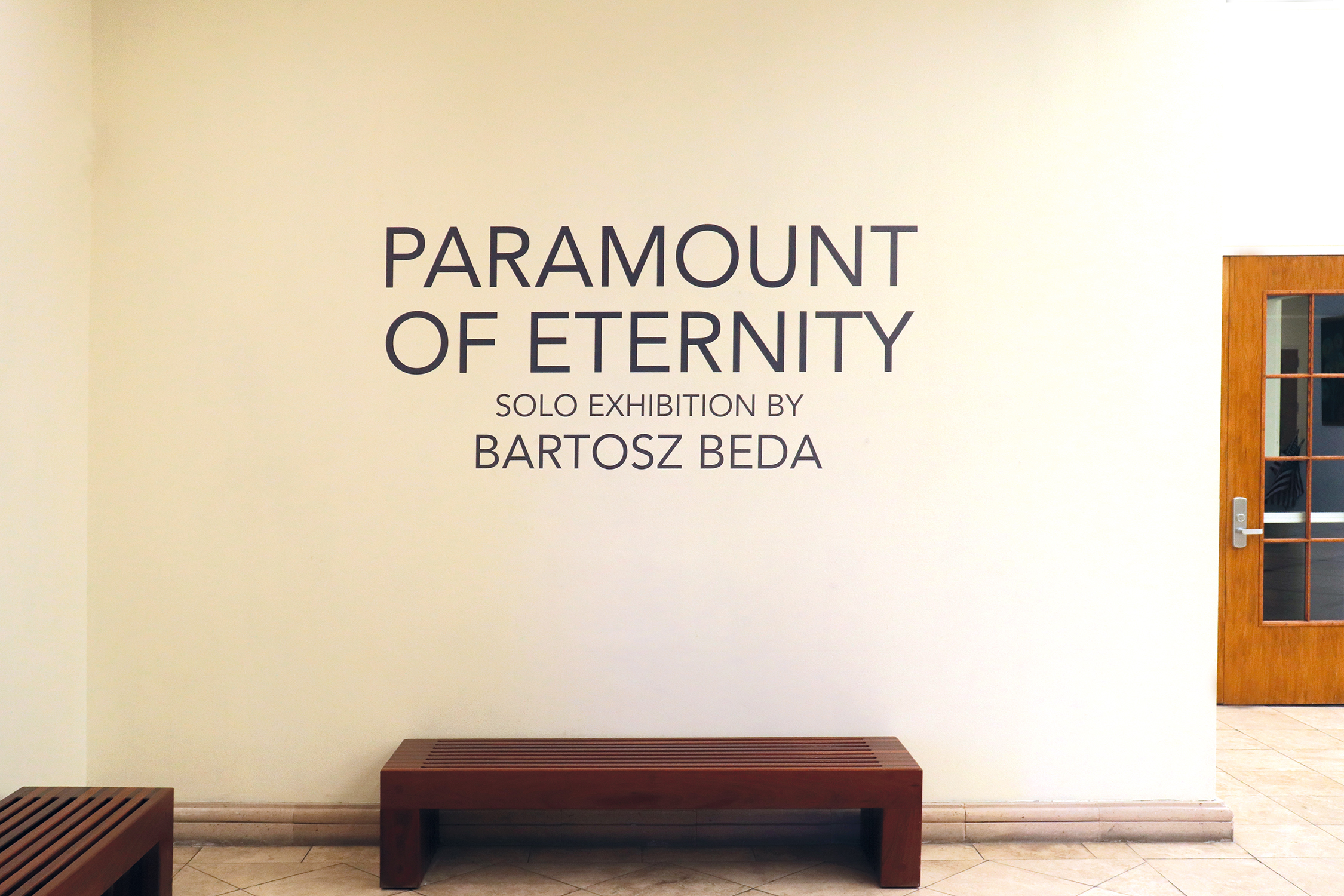 Bartosz Beda, Brownsville museum, dallas artist