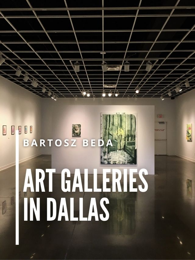 Read more about the article Art Galleries in Dallas